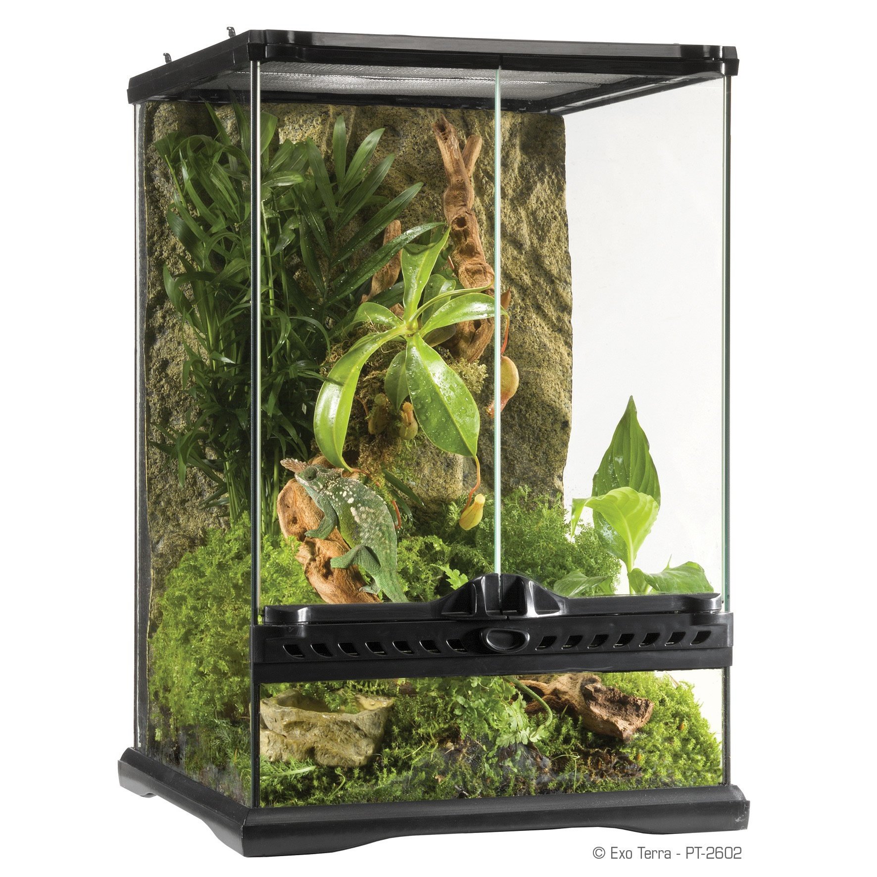 exo terra glass terrarium 30x30x45cm reptile. Black Bedroom Furniture Sets. Home Design Ideas