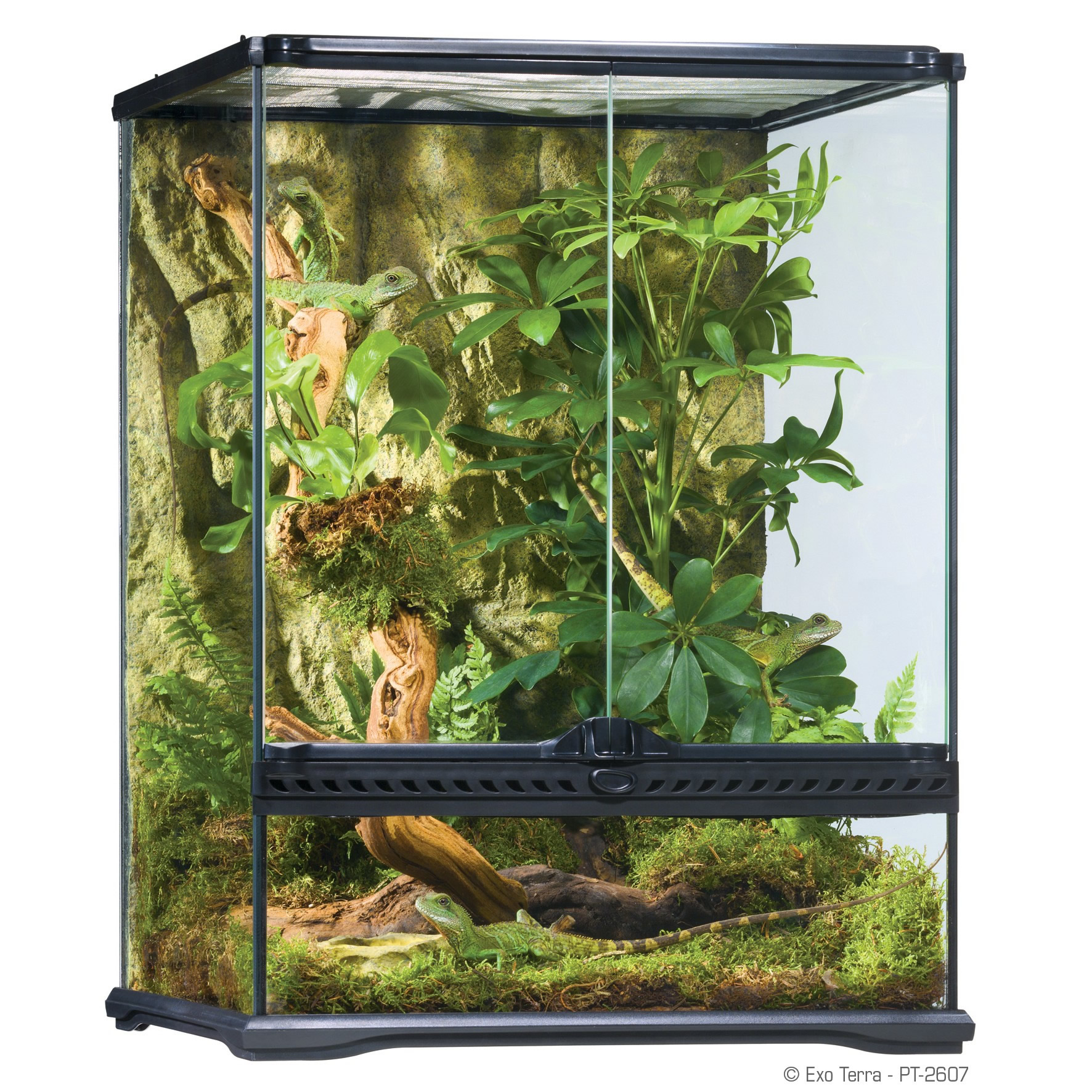 exo terra glass terrarium 45x45x60cm reptile. Black Bedroom Furniture Sets. Home Design Ideas