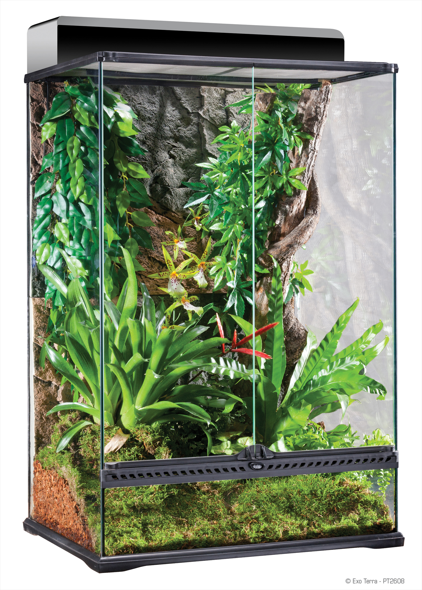 Exo Terra Vivarium Glass
