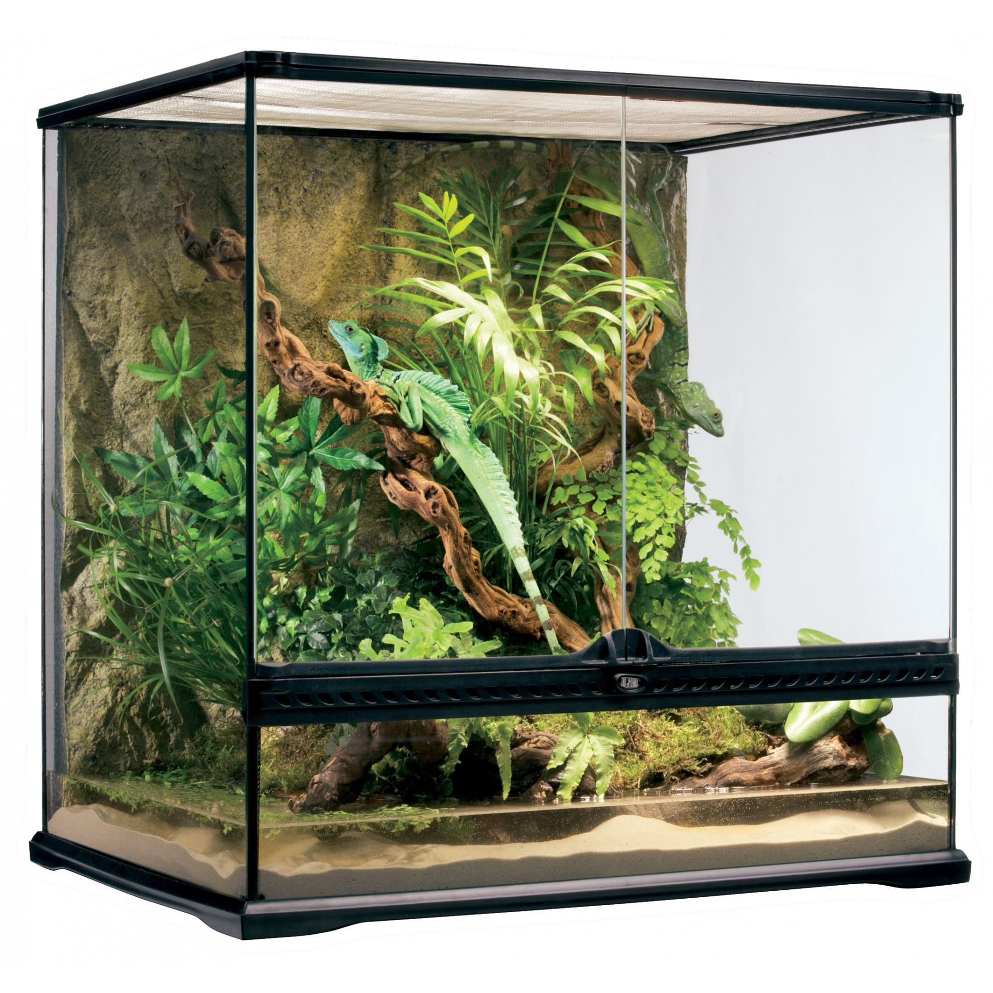 exo terra glass terrarium 60x45x60cm reptile. Black Bedroom Furniture Sets. Home Design Ideas