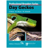Chimaira Day Geckos Professional Breeders Series