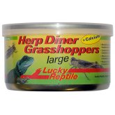 Lucky Reptile Herp Diner Large Grasshoppers 35g