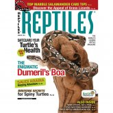 Reptiles Magazine March 2011