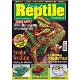 Practical Reptile Keeping FEBRUARY 2013