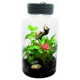 Lucky Reptile Insect- Tarrium 5 Litre
