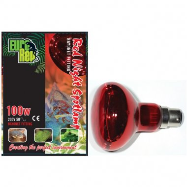Euro Rep Red Night Spotlamp 100W BC