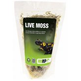 ProRep Live Moss Small Bag (approx 1.5L)