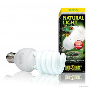 Exo Terra Natural Light Compact Lamp 26W