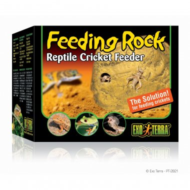 Exo Terra Feeding Rock Cricket Feeder