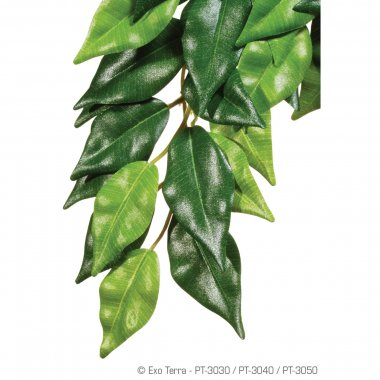 Exo Terra Silk Plant Ficus Medium