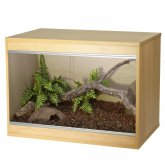 Vivexotic Repti-Home Vivarium - Small Beech 57.5x37.5x42cm