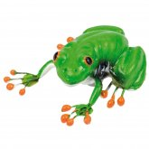 Blue Bug Magnet Red-eyed Tree Frog in tub