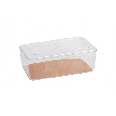 Stewart Clear Hatchling  Box Small 225x125x80mm