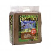 T-Rex Forest Bed Giant