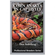 Corn Snake Care Sheet | Reptile Centre