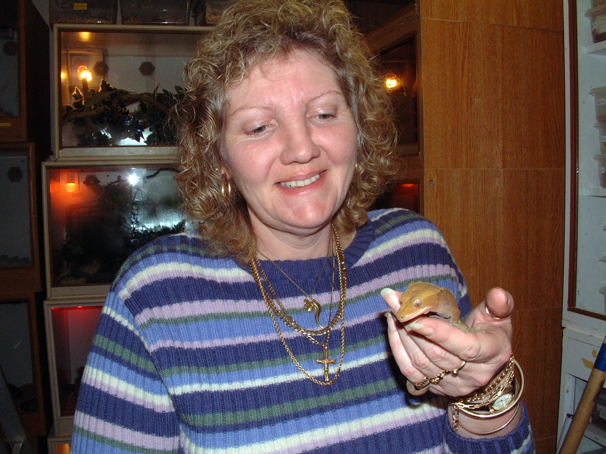 Sally Shapter's perm and crested gecko