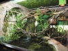 reptile-centre-at-whipsnade-zoo-20-w1500-h1500