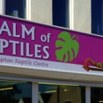 How to turn your Reptile Hobby into a Business, big NRC news.