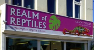 realm of reptiles