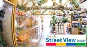 Northampton Reptile Centre Google Virtual Tour