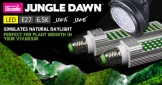 Arcadia's Jungle Dawn LED Bulbs – Why Do Plants Love them?