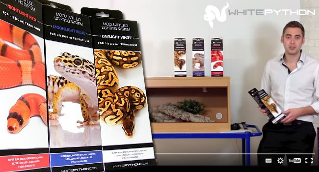 how to install white python LEDs