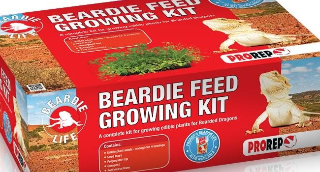 ProRep Beardie Feed Kit