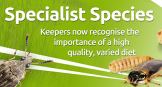 specialist reptile livefood