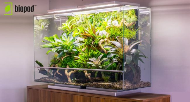 Setting Up a Biopod Grand
