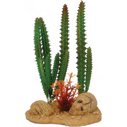 AquaSpectra Cactus with Rock Base