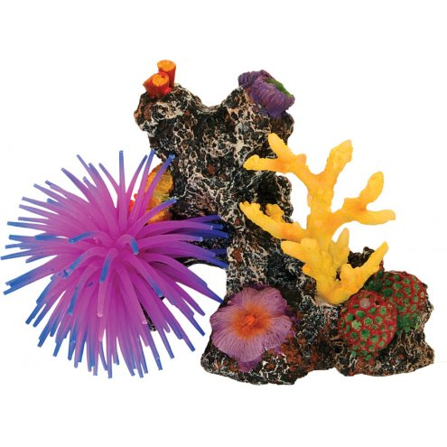 AquaSpectra Coral Reef with Anemone 15cm