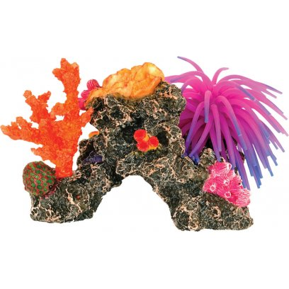 AquaSpectra Coral Reef with Anemone 18cm