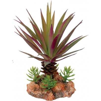 AquaSpectra Desert Plant with Rock Base