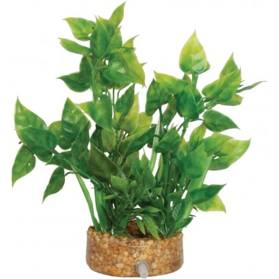 AquaSpectra Plant wth Airstone Base 16.5cm