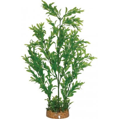 AquaSpectra Plant wth Airstone Base 42cm