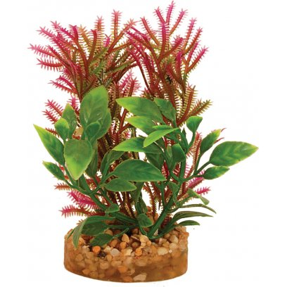 AquaSpectra Plant with Sandstone 9.5cm B