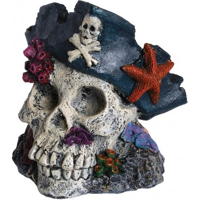 AquaSpectra Skull with Pirate Hat