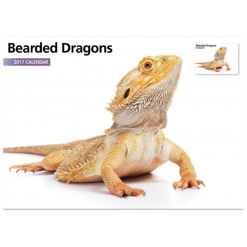 Bearded Dragon Calendar 2017