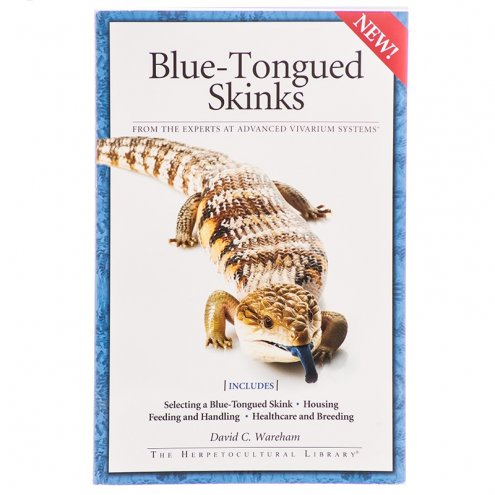 AVS Blue-Tongued Skinks
