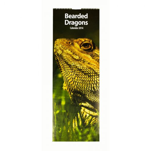 Bearded Dragons Calendar 2014 Slim