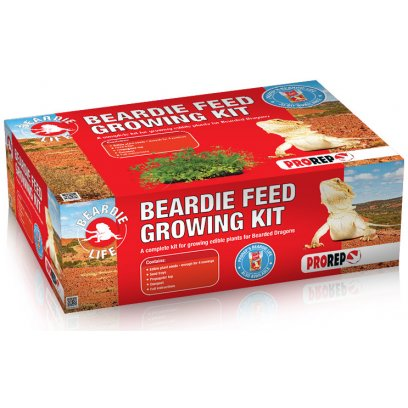 ProRep Beardie Feed Growing Kit
