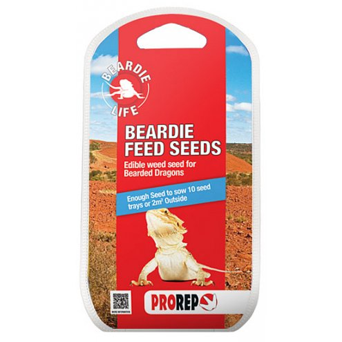 ProRep Beardie Feed Seeds 20g