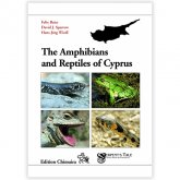 Chimaira Amphibians & Reptiles of Cyprus