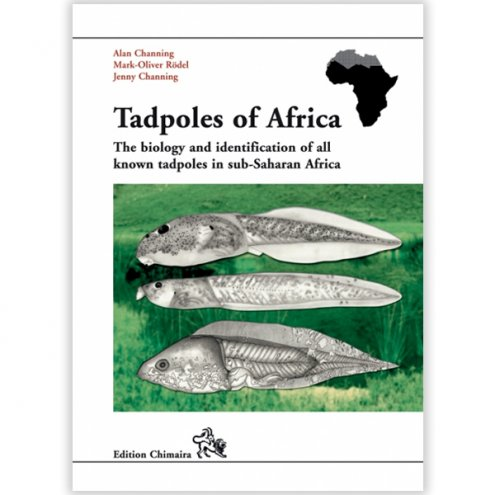 Chimaira Tadpoles of Africa