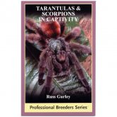 ECO Tarantulas & Scorpions in Captivity