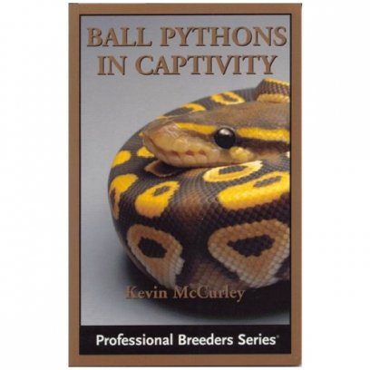 ECO Ball Pythons in Captivity