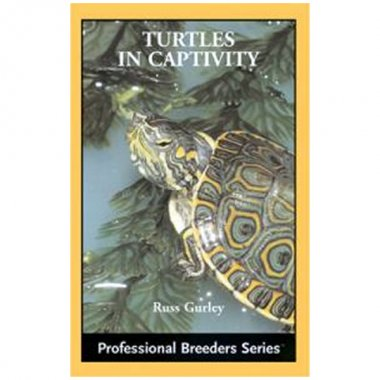 ECO Turtles in Captivity