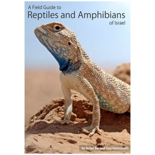 Chimaira A Field Guide to Reptiles & Amphibians of Israel