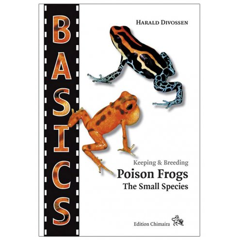 Chimaira Basics - Poison Frogs the small species