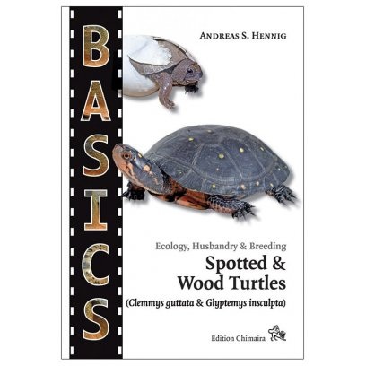 Chimaira Basics - Spotted & Wood Turtles